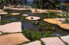 Water Gardens Need Not Be this Fancy to Add Punch to Your Landscape