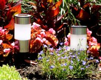 Stainless steel accent lights