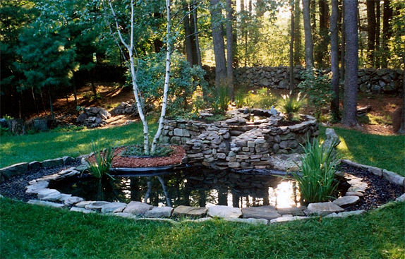 Koi Pond Garden with Waterfall