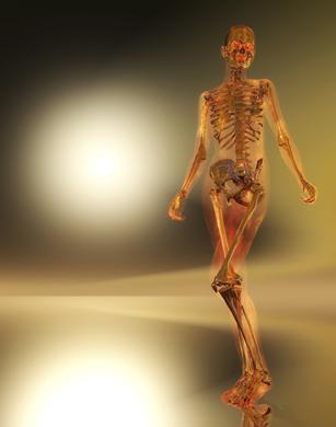 human skeleton with light