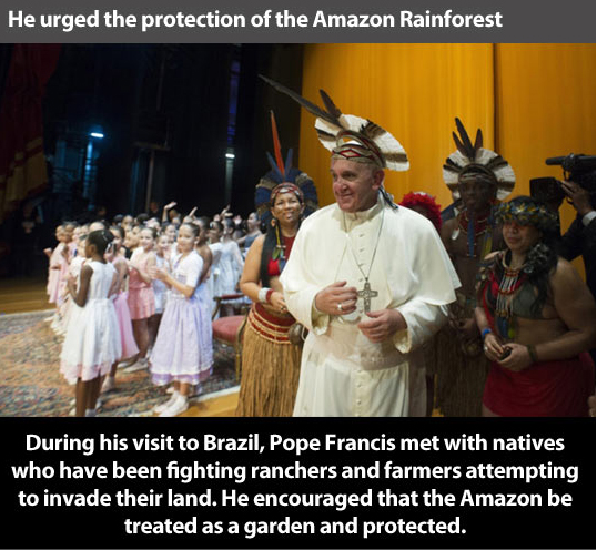 Pope Francis Urges Protection of Amazon Rainforest